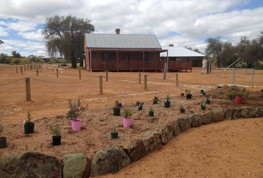 landscaping at Slater Homestead Goomalling