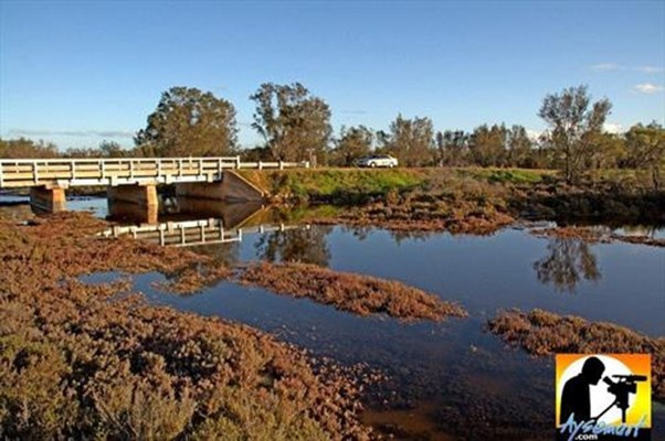 Scenery - Bridge over Mortlock River