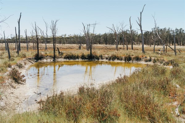 Scenery - Mortlock River